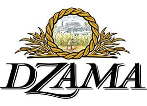 vidzar-groupe-dzama